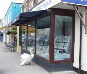 Camel Estates - Swan outside Estate Agent in Perranporth